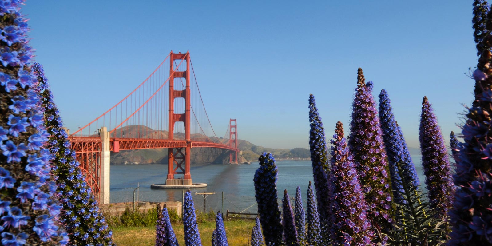 San Francisco And Monterey Ef Educational Tours Canada